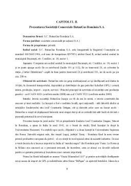 Proiect - Comunicarea Comerciala la SC ButanGas Romania SA
