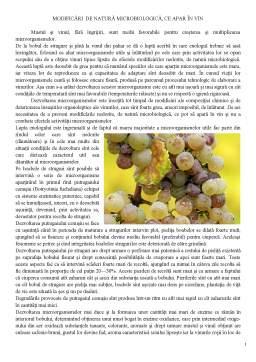 Referat - Modificări de Natură Microbiologică ce Apar în Vin