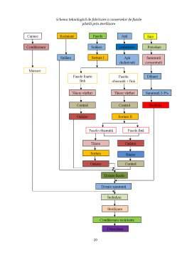 Licență - Sistem de Transport Pentru o Linie Tehnologica de Prelucrat Fasolea