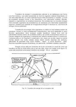 Curs - Fluxul de Energie - Informatie si de Substante in Ecosisteme
