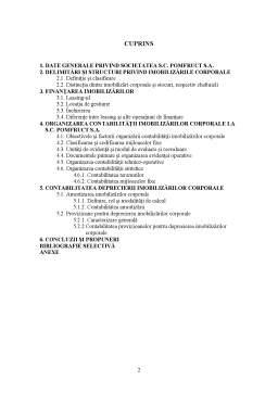 Licență - Contabilitatea Imobilizarilor Corporale si Deprecierii Acestora la SC