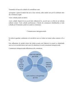 Curs - Elementele Procesului de Comunicare
