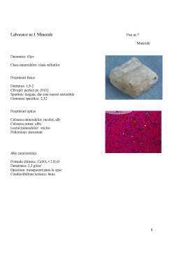 Laborator - Fise Minerale si Roci