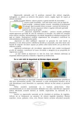 Proiect - Procese Tehnologice de Obținere a Săpunului