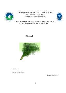 Referat - Mararul ca Planta Aromatica