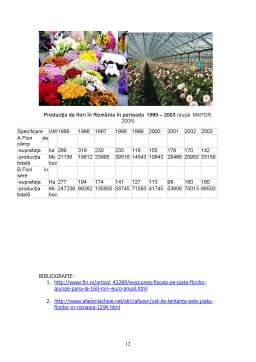 Referat - Piata Florilor - Politici Agricole
