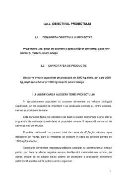 Licență - Proiectarea unei Secții de Obținere a Specialităților din Carne