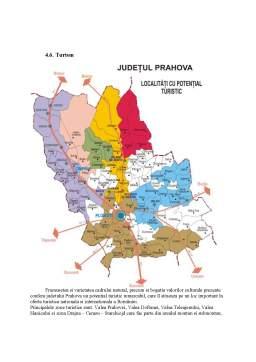 Proiect - Pozitia Judetului Prahova in Regiunea Sud
