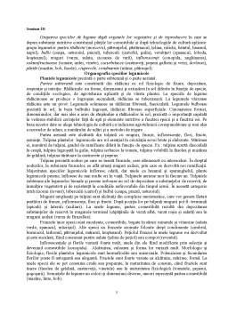 Seminar - Clasificarea Speciilor Legumicole