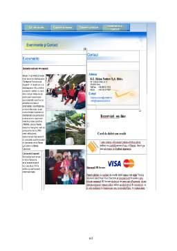 Licență - Rolul Internetului în Dezvoltarea Afacerilor Electronice în Societatea Informațională