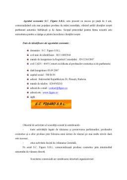 Proiect - Auditul unui Sistem Informatic
