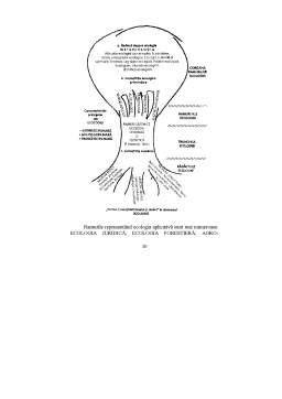 Curs - Ecologie Juridică
