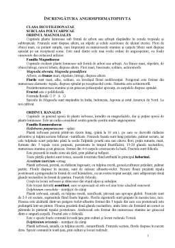 Curs - Clasa Dicotiledonatae