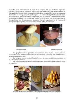 Proiect - Fromages Francais
