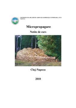 Curs - Micropropagare