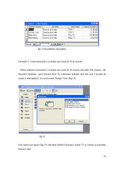 Licență - Baze de Date Acces