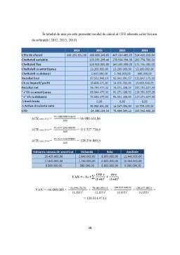 Proiect - Analiza Performanței și Evaluarea unui Proiect de Investiții Directe