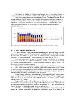Proiect - Aspecte Energetice ale Arderii Carbunilor Solizi si Mediul