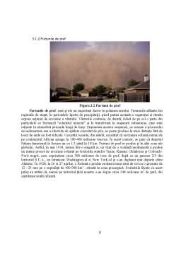 Proiect - Poluarea Mediului