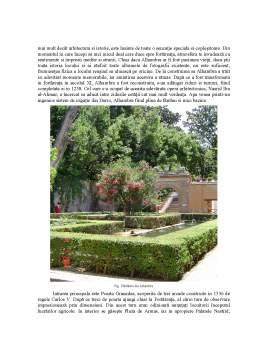 Curs - Andaluzia - Peisaje Culturale