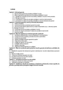 Proiect - Plan de Securitate și Sănătate în Munca