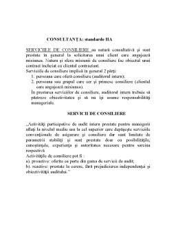 Curs - Audit Intern
