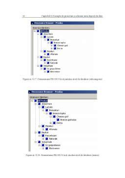 Curs - Sisteme de Asistare a Deciziilor