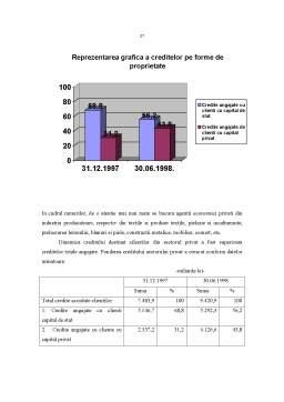 Referat - Riscurile Bancare in Procesul Creditarii