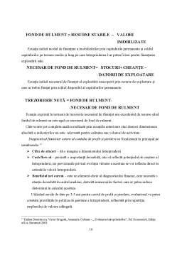 Proiect - Procesul de Evaluare a Intreprinderii - Sinteza Diagnosticelor