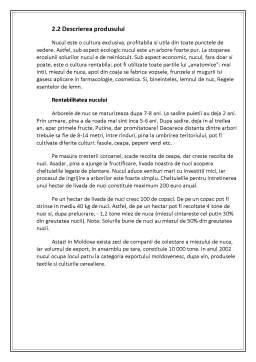 Referat - Plan de Afaceri Livada de Nuci