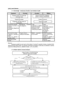 Curs - Audit Financiar Contabil