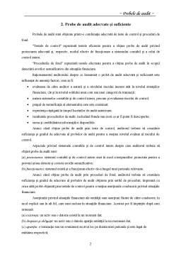Proiect - Probe de Audit