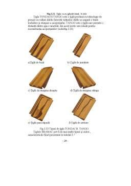 Curs - Elemente de Construcție
