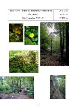 Proiect - Conservarea Biodiversitatii Forestiere in Parcul National Cheile Nerei – Beusnita