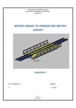 Proiect - Beton Armat Pod Cale Ferata