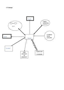 Proiect - Metode și Tehnici în Asistența Socială la Nivel Individual