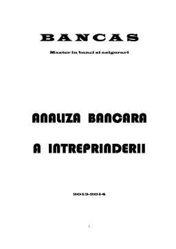 Curs - Analiza Bancara a Inteprinderii