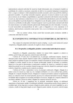 Proiect - Contractul Individual de Muncă