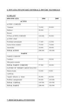 Referat - Studiu de Fezabilitate pentru Dezvoltarea Societatii Crembisc SA