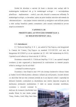 Disertație - Markeingul tradițional și ecomarketingul