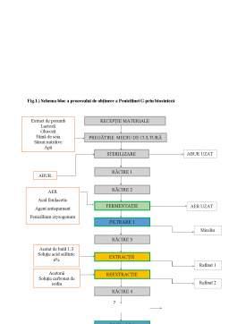 Licență - Tehnici de separare și concentrare în biotehnologii