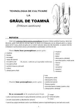 Curs - Tehnologia de cultivare la grâul de toamnă