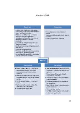 Proiect - Plan de afaceri apicultura
