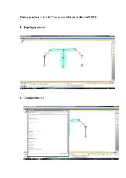 Laborator - Retea cu protocol OSPF
