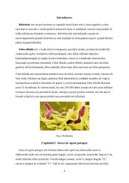 Notiță - Epidemiologia bolilor provocate de Rickettsia