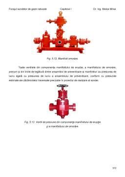 Curs - Forajul sondelor de gaze naturale
