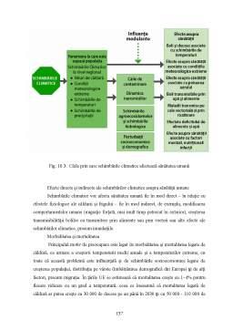 Curs - Factori poluanți ai mediului