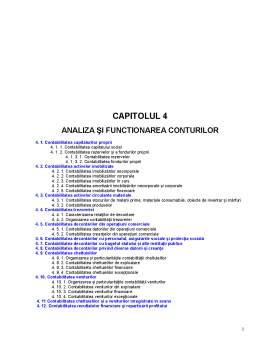Curs - Analiza și Functionarea Conturilor