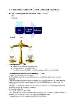 Curs - Buget și trezorerie