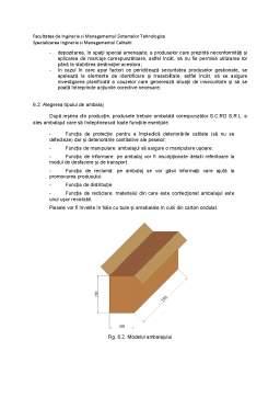 Proiect - Asamblare și ambalare
